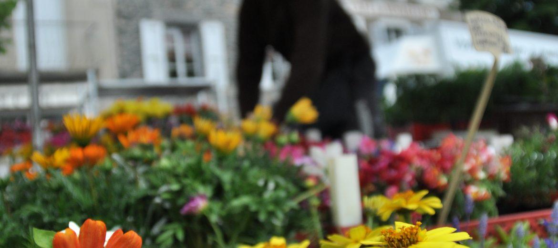 marché foire entreprise barbaux fleurs 2