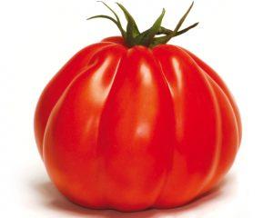 Tomate ancienne CORAZON